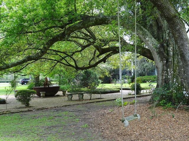 kids swing in the garden